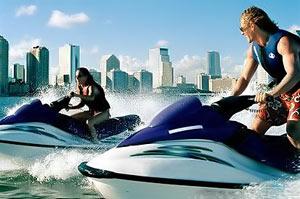 Майями, Флорида, США, шоу морских животных, туризм