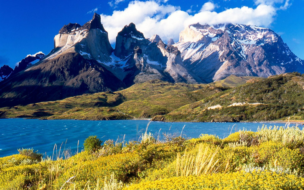 Chile South